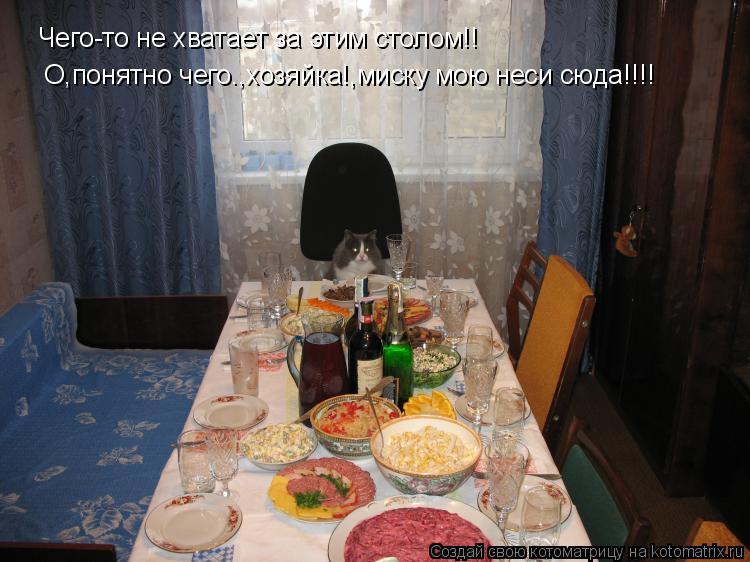 Котоматрица: Чего-то не хватает за этим столом!! О,понятно чего.,хозяйка!,миску мою неси сюда!!!!