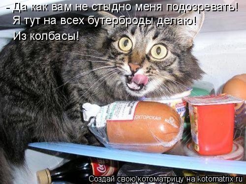 Котоматрица: - Да как вам не стыдно меня подозревать! Я тут на всех бутерброды делаю! Из колбасы!