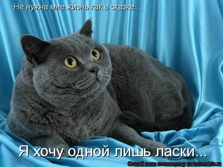 Котоматрица: Не нужна мне жизнь как в сказке... Я хочу одной лишь ласки...