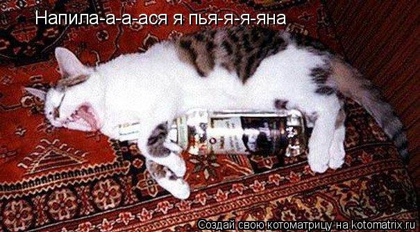 Котоматрица: Напила-а-а-ася я пья-я-я-яна