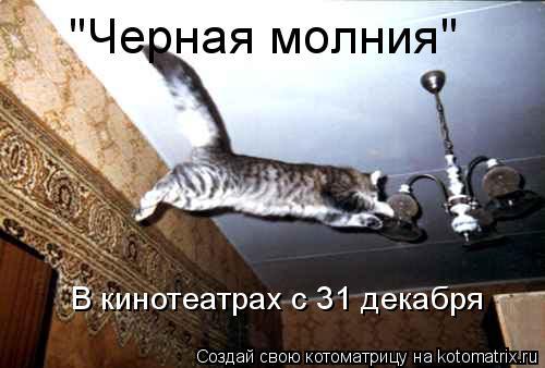 """Котоматрица: """"Черная молния"""" В кинотеатрах с 31 декабря"""