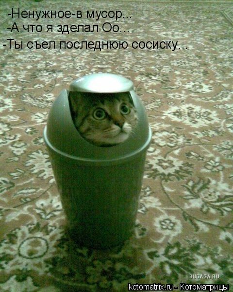 Котоматрица: -Ненужное-в мусор... -А что я зделал Оо... -Ты съел последнюю сосиску ...