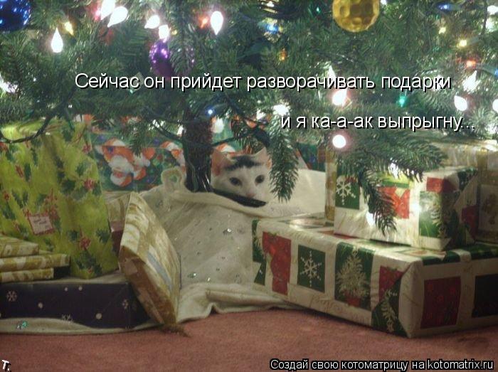 Котоматрица: Сейчас он прийдет разворачивать подарки и я ка-а-ак выпрыгну...