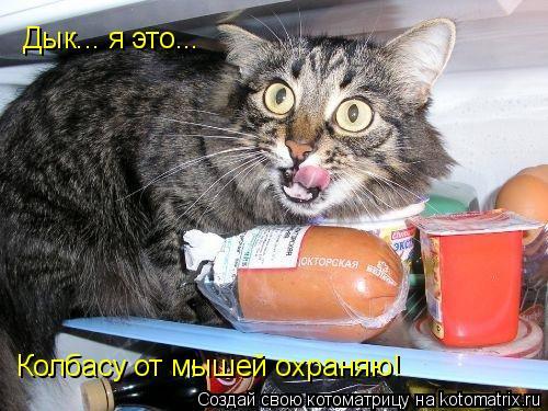 Котоматрица: Дык... я это... Колбасу от мышей охраняю!