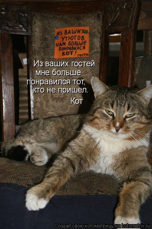 Котоматрица: Из ваших гостей мне больше понравился тот, Кот кто не пришел.