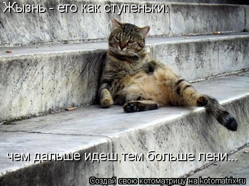 Котоматрица: Жызнь - ето как ступеньки: чем дальше идеш,тем больше лени...