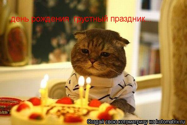 Котоматрица: день рождения  грустный праздник...