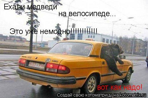 Котоматрица: Ехали медведи на велосипеде... Это уже немодно!!!!!!!!!!!! вот как надо!