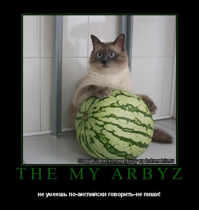 Котоматрица: The my arbyz не умеешь по-английски говорить-не пиши!