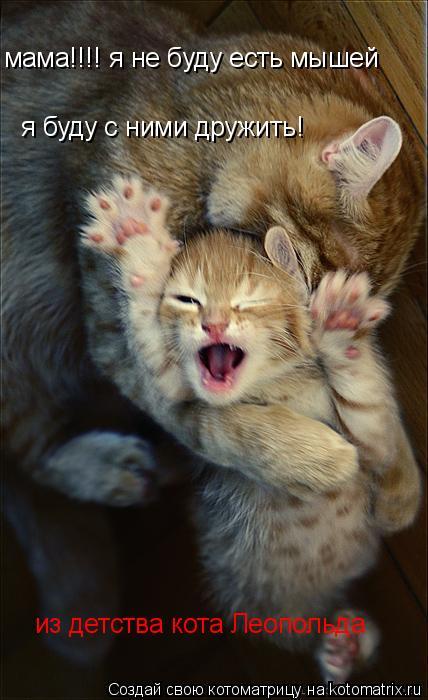 Котоматрица: я буду с ними дружить! мама!!!! я не буду есть мышей из детства кота Леопольда