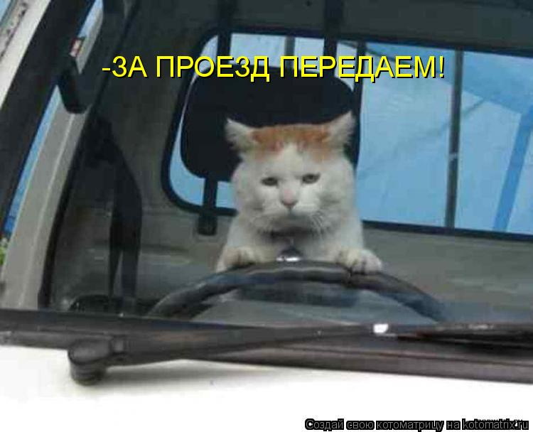 Котоматрица: -ЗА ПРОЕЗД ПЕРЕДАЕМ!