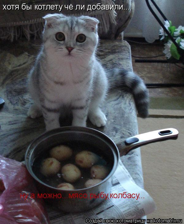 Котоматрица: хотя бы котлету чё ли добавили... ну а можно...мясо,рыбу,колбасу...