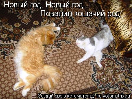 Котоматрица: Новый год, Новый год... Повалил кошачий род...