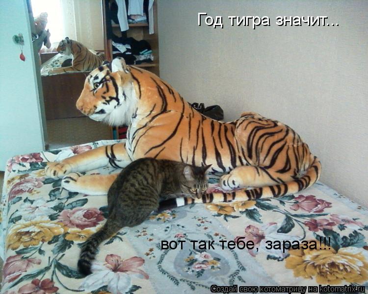 Котоматрица: Год тигра значит... вот так тебе, зараза!!!