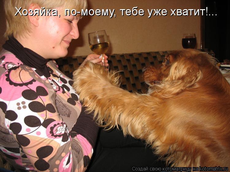 Котоматрица: Хозяйка, по-моему, тебе уже хватит!...
