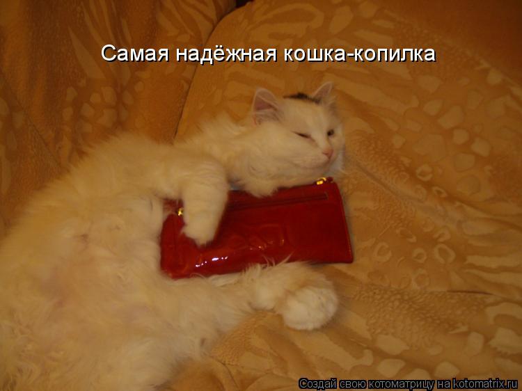 Котоматрица: Самая надёжная кошка-копилка