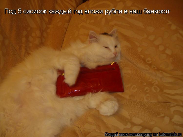 Котоматрица: Под 5 сисисок каждый год вложи рубли в наш банкокот