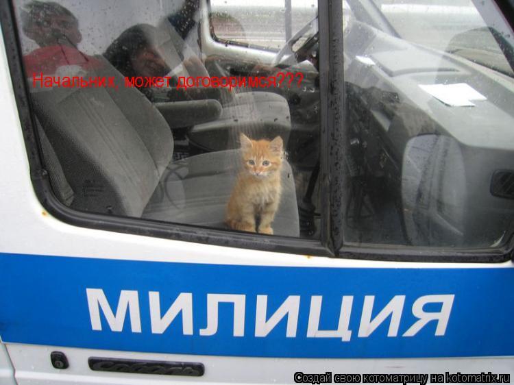 Котоматрица: Начальник, может договоримся???
