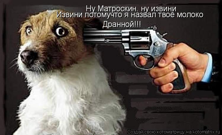 Котоматрица: Ну Матроскин. ну извини Извини потомучто я назвал твоё молоко Дранной!!!