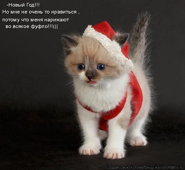 Котоматрица: -Новый Год!!! Но мне не очень то нравиться , потому что меня нарижают во всякое фуфло!!!(((