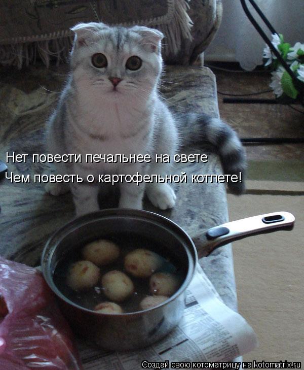 Котоматрица: Нет повести печальнее на свете Чем повесть о картофельной котлете!