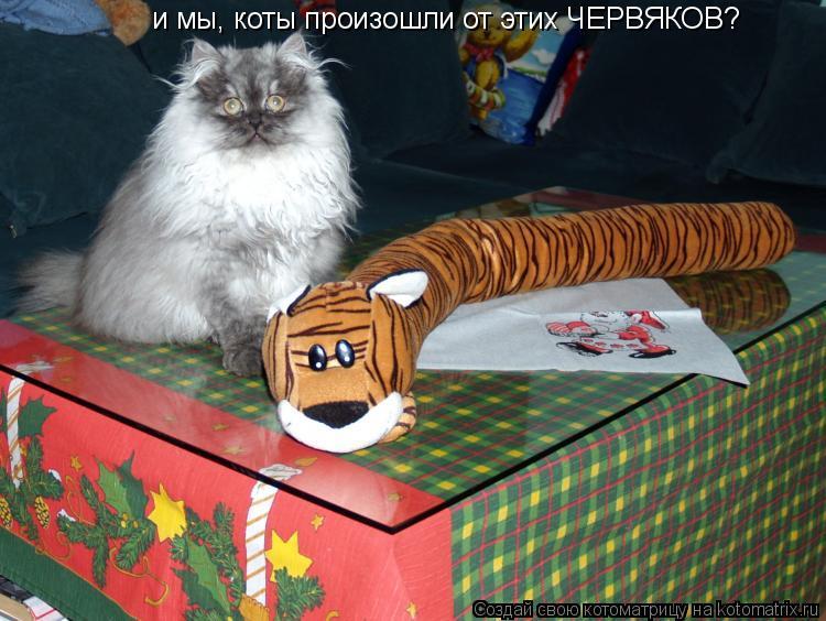 Котоматрица: и мы, коты произошли от этих ЧЕРВЯКОВ?