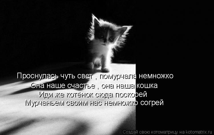 Котоматрица: Проснулась чуть свет , помурчала немножко Она наше счастье , она наша кошка Иди же котёнок сюда поскорей Мурчаньем своим нас немножко согре