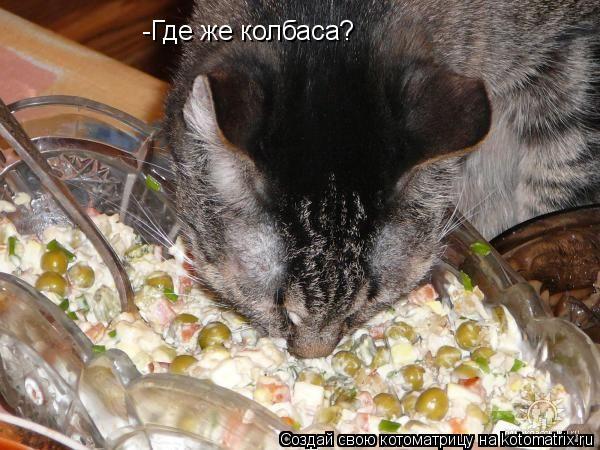 Котоматрица: -Где же колбаса?