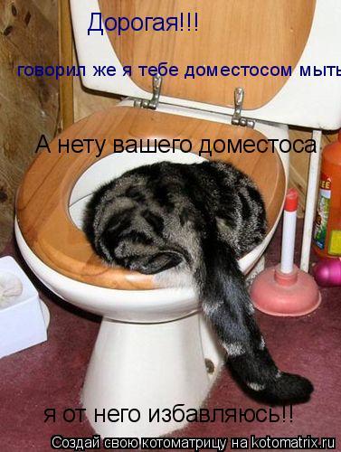Котоматрица: Дорогая!!! говорил же я тебе доместосом мыть А нету вашего доместоса я от него избавляюсь!!