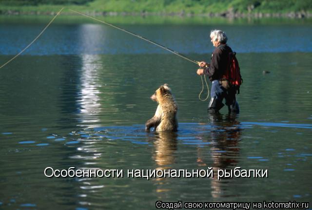 Котоматрица: Особенности национальной рыбалки