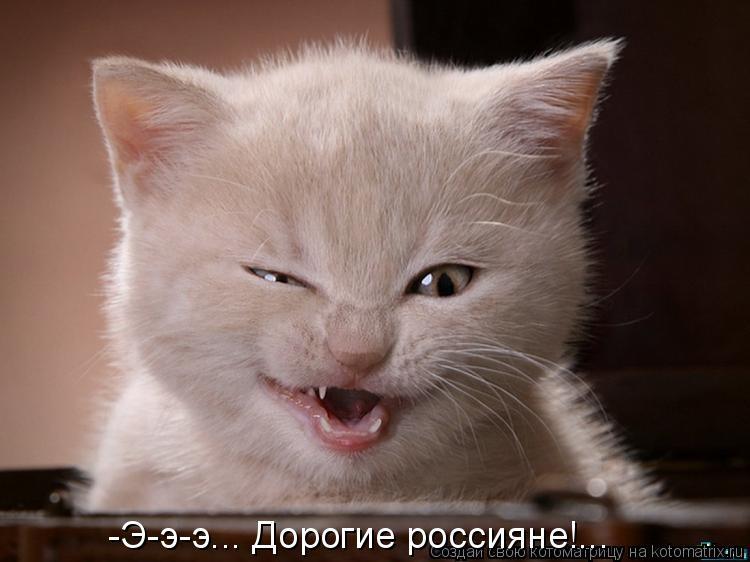 Котоматрица: -Э-э-э... Дорогие россияне!...