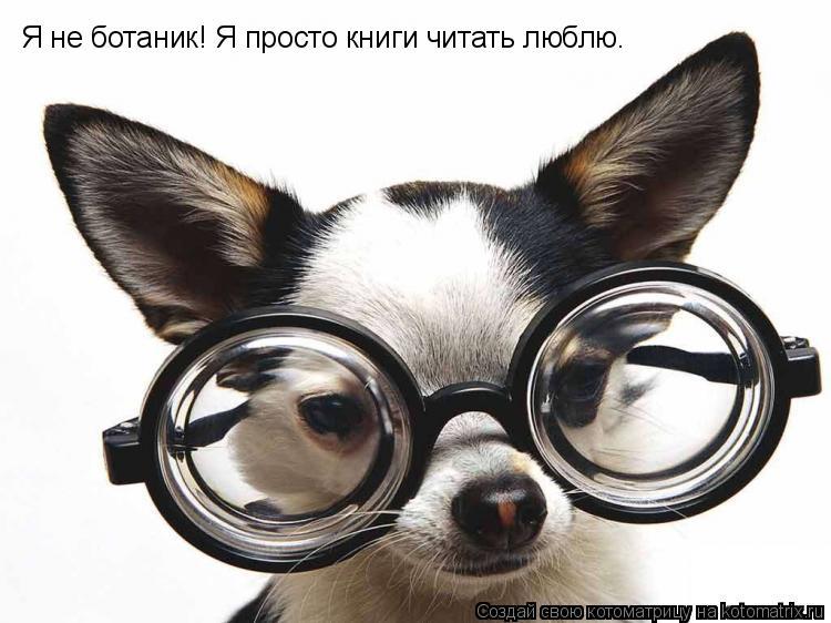 Котоматрица: Я не ботаник! Я просто книги читать люблю.