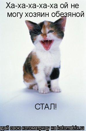 Котоматрица: Ха-ха-ха-ха-ха ой не  могу хозяин обезяной СТАЛ!