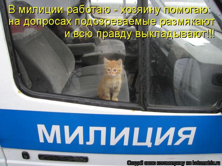 Котоматрица: на допросах подозреваемые размякают и всю правду выкладывают!!! В милиции работаю - хозяину помогаю: