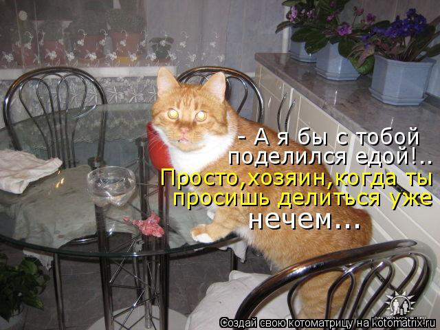Котоматрица: - А я бы с тобой  поделился едой!.. Просто,хозяин,когда ты просишь делиться уже нечем...