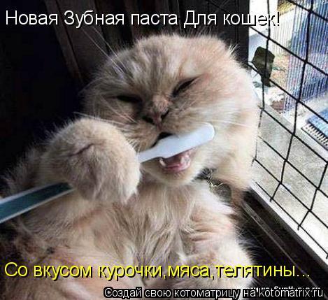 Котоматрица: Новая Зубная паста Для кошек! Со вкусом курочки,мяса,телятины...