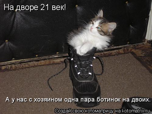 Котоматрица: На дворе 21 век! А у нас с хозяином одна пара ботинок на двоих.