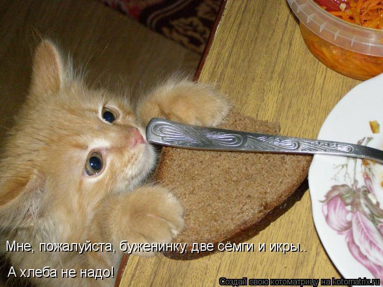 Котоматрица: Мне, пожалуйста, буженинку, две сёмги и икры..  А хлеба не надо!