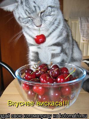 Котоматрица: Вкуснее вискаса!!!