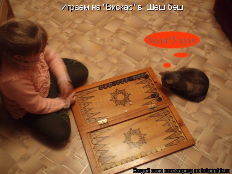 """Котоматрица: Играем на """"Вискас"""" в  Шеш беш"""