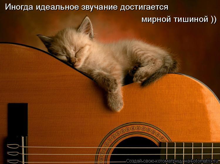 Котоматрица: Иногда идеальное звучание достигается  мирной тишиной ))