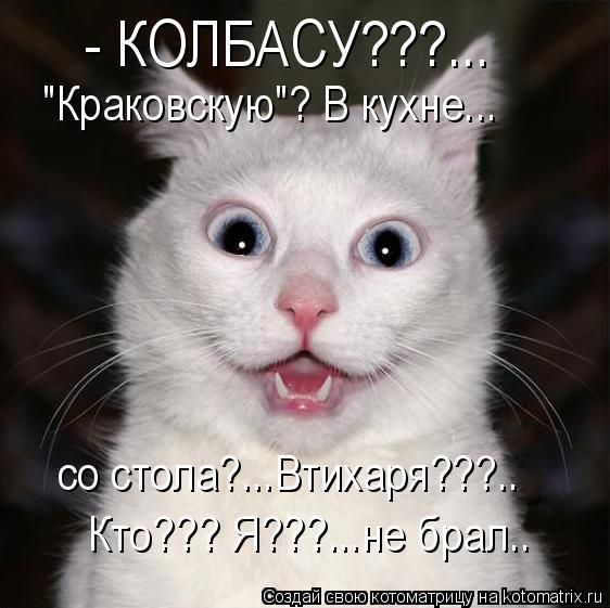 "Котоматрица: - КОЛБАСУ???...  ""Краковскую""? В кухне... со стола?...Втихаря???..  Кто??? Я???...не брал.."