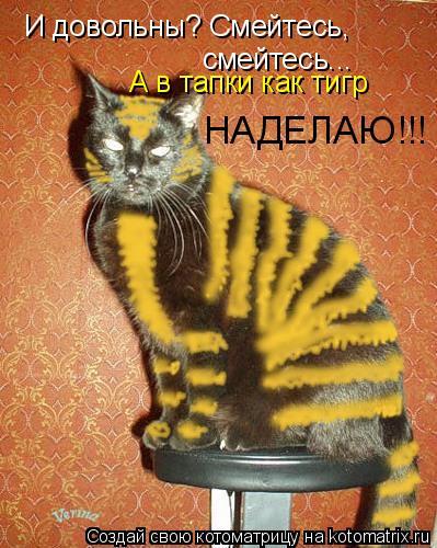 Котоматрица: И довольны? Смейтесь, смейтесь... А в тапки как тигр НАДЕЛАЮ!!!