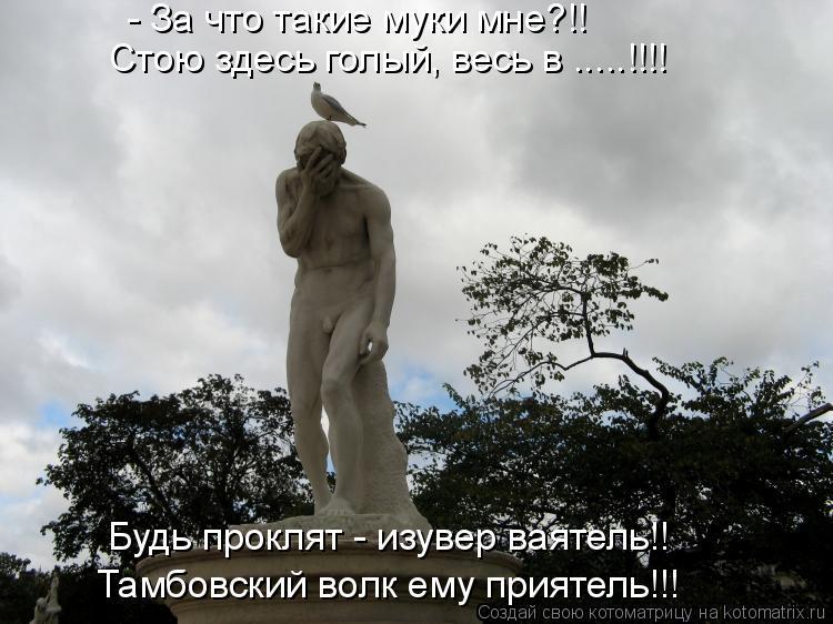 Котоматрица: - За что такие муки мне?!!  Стою здесь голый, весь в .....!!!! Будь проклят - изувер ваятель!!  Тамбовский волк ему приятель!!!
