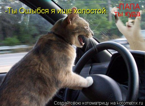 Котоматрица: -ПАПА ты куда -Ты Ошыбся я ище холостой