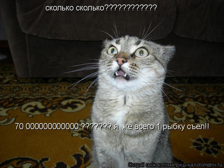 Котоматрица: сколько сколько???????????? 70 000000000000 ??????? я  же всего 1 рыбку съел!!