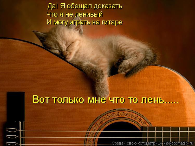 Котоматрица: Да! Я обещал доказать Что я не ленивый И могу играть на гитаре Вот только мне что то лень.....
