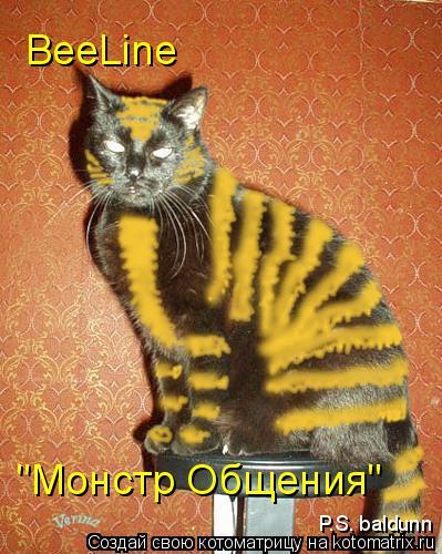 """Котоматрица: BeeLine """"Монстр Общения"""" P.S. baldunn"""
