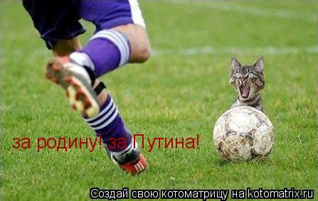 Котоматрица: за родину! за Путина!
