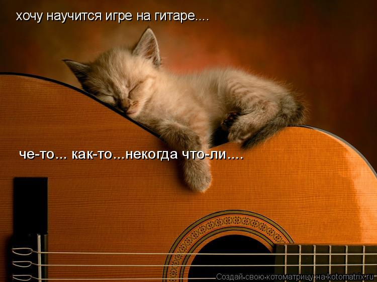 Котоматрица: хочу научится игре на гитаре.... че-то... как-то...некогда что-ли....